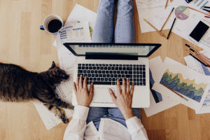 5 free PDF editors you can use right now