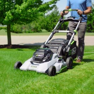 Tech Talk: Eco-friendly ways to care for your lawn